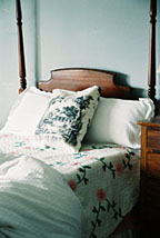 Toile pillow on bed